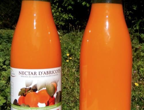 Nectar abricot-MDA